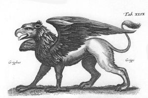 1660 Engraving of a Griffin by Matthius Merian